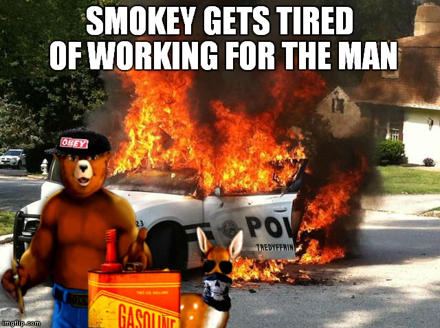 If I were you I'd be more worried about that deer... | SMOKEY GETS TIRED OF WORKING FOR THE MAN | image tagged in smokey the bear,stand up,fight the power | made w/ Imgflip meme maker