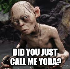 DID YOU JUST CALL ME YODA? | image tagged in star wars,lord of the rings | made w/ Imgflip meme maker