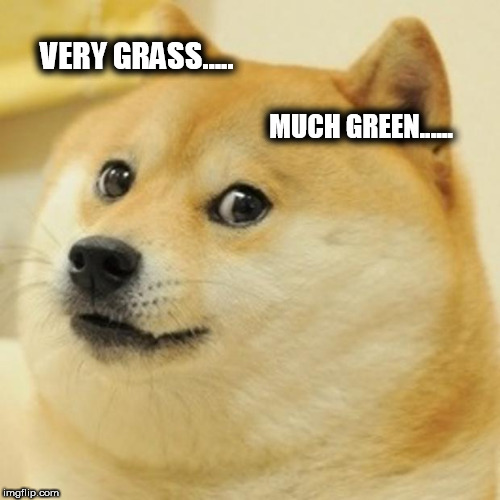 Doge Meme | VERY GRASS..... MUCH GREEN...... | image tagged in memes,doge | made w/ Imgflip meme maker