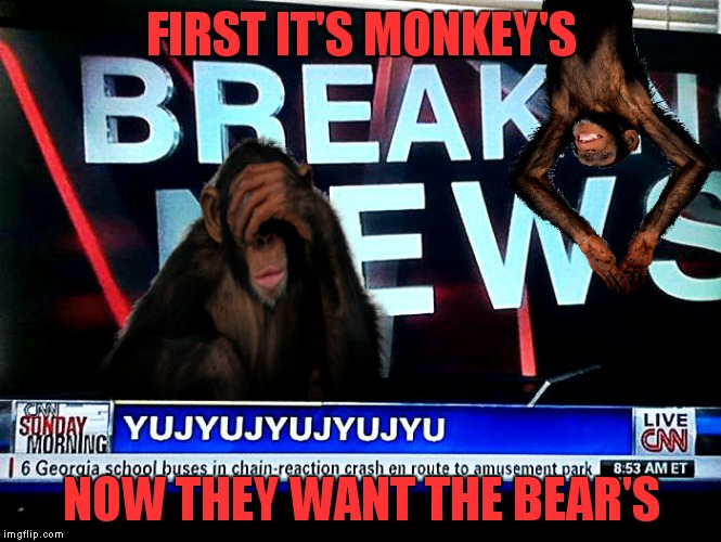 FIRST IT'S MONKEY'S NOW THEY WANT THE BEAR'S | made w/ Imgflip meme maker