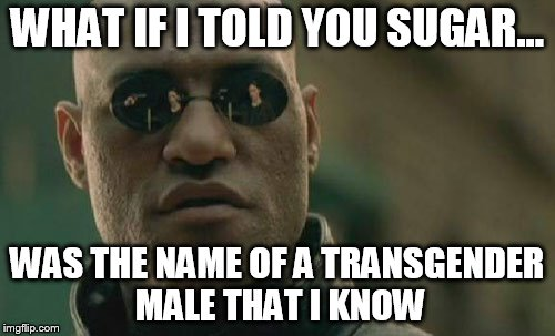 Matrix Morpheus Meme | WHAT IF I TOLD YOU SUGAR... WAS THE NAME OF A TRANSGENDER MALE THAT I KNOW | image tagged in memes,matrix morpheus | made w/ Imgflip meme maker