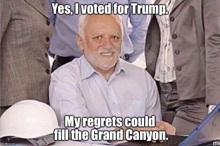 Vote | Yes, I voted for Trump. My regrets could fill the Grand Canyon. | image tagged in donald trump | made w/ Imgflip meme maker
