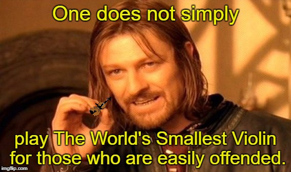 One Does Not Simply |  One does not simply; play The World's Smallest Violin for those who are easily offended. | image tagged in memes,one does not simply,liberal snowflakes,triggered liberal,words that offend liberals | made w/ Imgflip meme maker