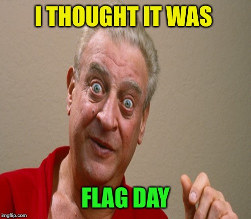 I THOUGHT IT WAS FLAG DAY | made w/ Imgflip meme maker