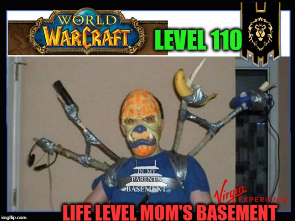 Charisma Points 10 | LEVEL 110 LIFE LEVEL MOM'S BASEMENT | image tagged in world of warcraft,memes,funny,level,mom's  basement guy | made w/ Imgflip meme maker