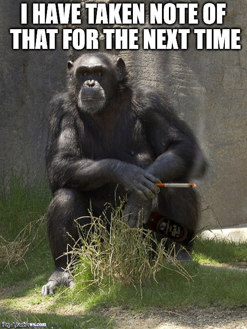 Smoking chimp | I HAVE TAKEN NOTE OF THAT FOR THE NEXT TIME | image tagged in smoking chimp | made w/ Imgflip meme maker