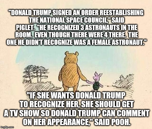 "Pooh and Piglet | ""DONALD TRUMP SIGNED AN ORDER REESTABLISHING THE NATIONAL SPACE COUNCIL,"" SAID PIGLET.  ""HE RECOGNIZED 3 ASTRONAUTS IN THE ROOM.  EVEN THOUG 