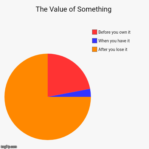 The Value of Something | After you lose it, When you have it, Before you own it | image tagged in funny,pie charts | made w/ Imgflip pie chart maker