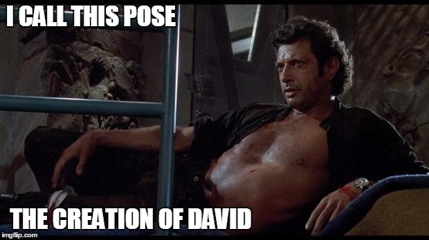 jeff goldblum | I CALL THIS POSE THE CREATION OF DAVID | image tagged in jeff goldblum | made w/ Imgflip meme maker