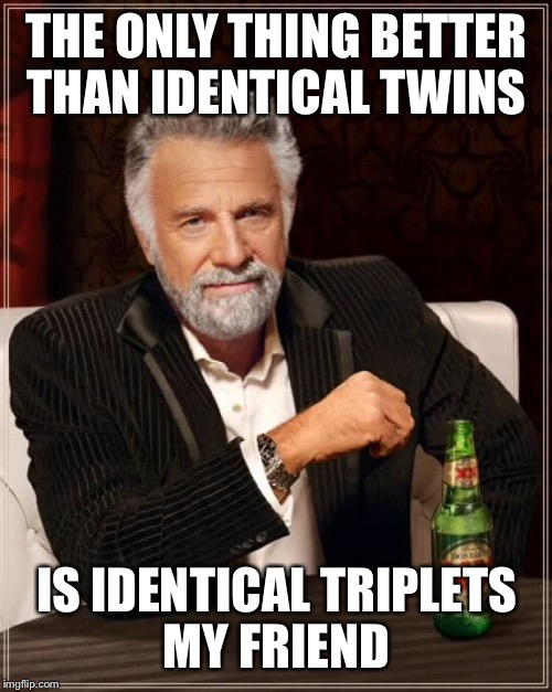 The Most Interesting Man In The World Meme | THE ONLY THING BETTER THAN IDENTICAL TWINS IS IDENTICAL TRIPLETS MY FRIEND | image tagged in memes,the most interesting man in the world | made w/ Imgflip meme maker