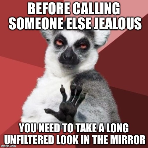 How Bow Dah? |  BEFORE CALLING SOMEONE ELSE JEALOUS; YOU NEED TO TAKE A LONG UNFILTERED LOOK IN THE MIRROR | image tagged in memes,chill out lemur | made w/ Imgflip meme maker
