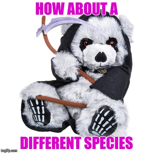 HOW ABOUT A DIFFERENT SPECIES | image tagged in the grim teddy | made w/ Imgflip meme maker