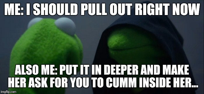 Evil Kermit Meme | ME: I SHOULD PULL OUT RIGHT NOW ALSO ME: PUT IT IN DEEPER AND MAKE HER ASK FOR YOU TO CUMM INSIDE HER... | image tagged in evil kermit | made w/ Imgflip meme maker