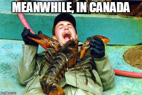 Lobster | MEANWHILE, IN CANADA | image tagged in lobster | made w/ Imgflip meme maker