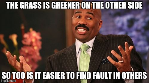Steve Harvey Meme | THE GRASS IS GREENER ON THE OTHER SIDE SO TOO IS IT EASIER TO FIND FAULT IN OTHERS | image tagged in memes,steve harvey | made w/ Imgflip meme maker