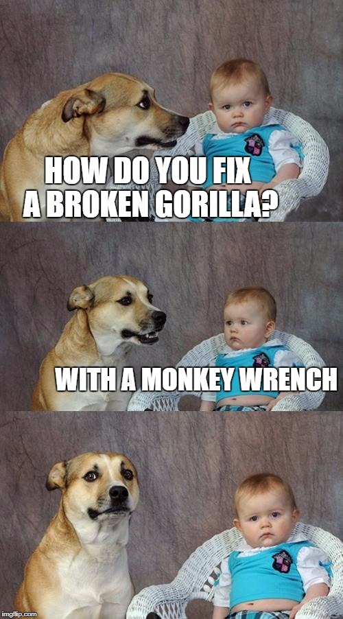 Dad Joke Dog Meme | HOW DO YOU FIX A BROKEN GORILLA? WITH A MONKEY WRENCH | image tagged in memes,dad joke dog | made w/ Imgflip meme maker