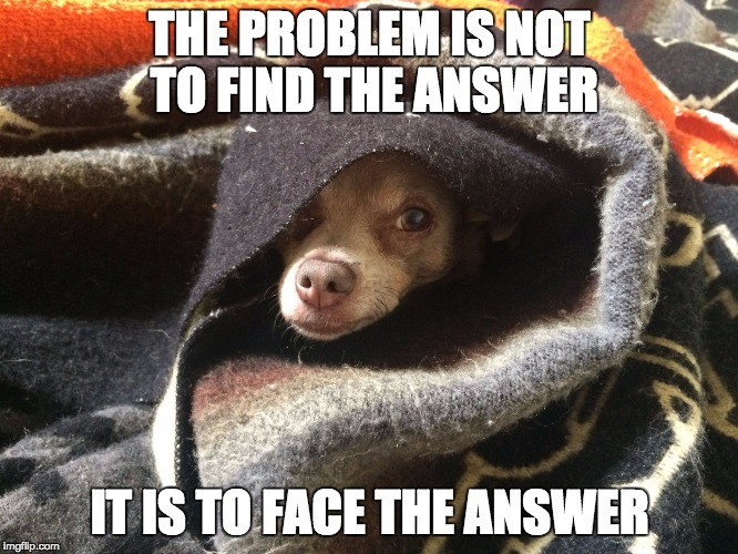 THE PROBLEM IS NOT TO FIND THE ANSWER IT IS TO FACE THE ANSWER | image tagged in walle spiritual teacher | made w/ Imgflip meme maker