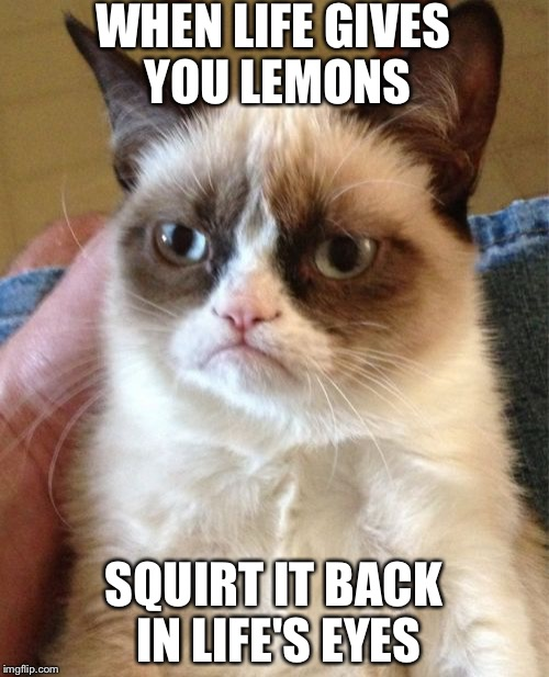 Grumpy Cat Meme | WHEN LIFE GIVES YOU LEMONS SQUIRT IT BACK IN LIFE'S EYES | image tagged in memes,grumpy cat | made w/ Imgflip meme maker