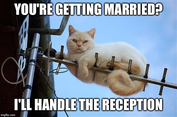 YOU'RE GETTING MARRIED? I'LL HANDLE THE RECEPTION | made w/ Imgflip meme maker
