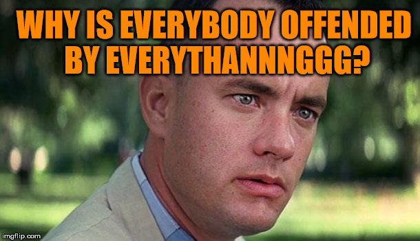 For One Reason or Another | WHY IS EVERYBODY OFFENDED BY EVERYTHANNNGGG? | image tagged in gump,forrest,funny,memes,goto,jenny | made w/ Imgflip meme maker