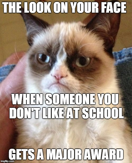 Look on your face | THE LOOK ON YOUR FACE GETS A MAJOR AWARD WHEN SOMEONE YOU DON'T LIKE AT SCHOOL | image tagged in memes,grumpy cat | made w/ Imgflip meme maker