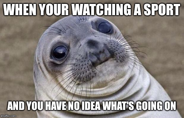 Awkward Moment Sealion Meme | WHEN YOUR WATCHING A SPORT AND YOU HAVE NO IDEA WHAT'S GOING ON | image tagged in memes,awkward moment sealion | made w/ Imgflip meme maker