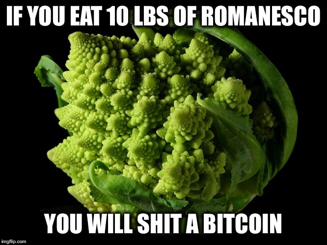 IF YOU EAT 10 LBS OF ROMANESCO YOU WILL SHIT A BITCOIN | image tagged in romanesco cauliflower fractal broccoli math magic | made w/ Imgflip meme maker