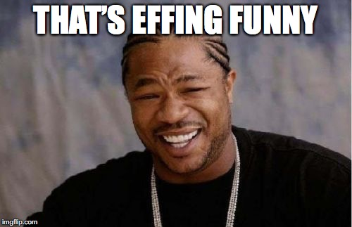Yo Dawg Heard You Meme | THAT'S EFFING FUNNY | image tagged in memes,yo dawg heard you | made w/ Imgflip meme maker