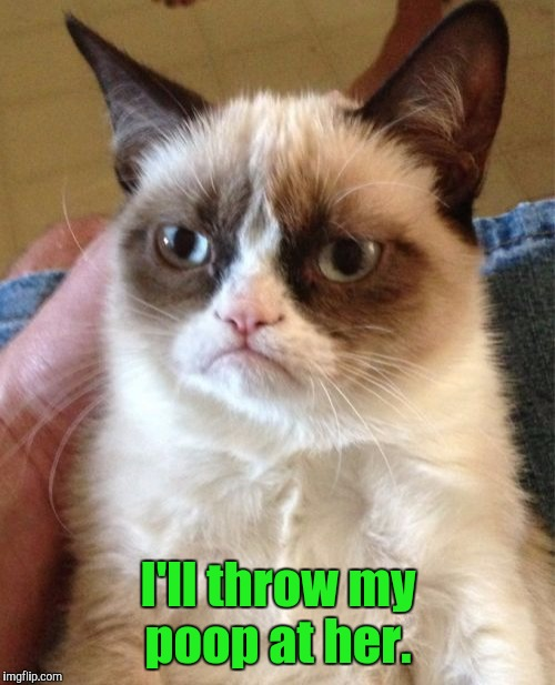 Grumpy Cat Meme | I'll throw my poop at her. | image tagged in memes,grumpy cat | made w/ Imgflip meme maker