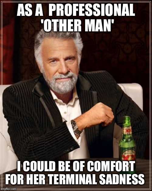 The Most Interesting Man In The World Meme | AS A  PROFESSIONAL 'OTHER MAN' I COULD BE OF COMFORT FOR HER TERMINAL SADNESS | image tagged in memes,the most interesting man in the world | made w/ Imgflip meme maker