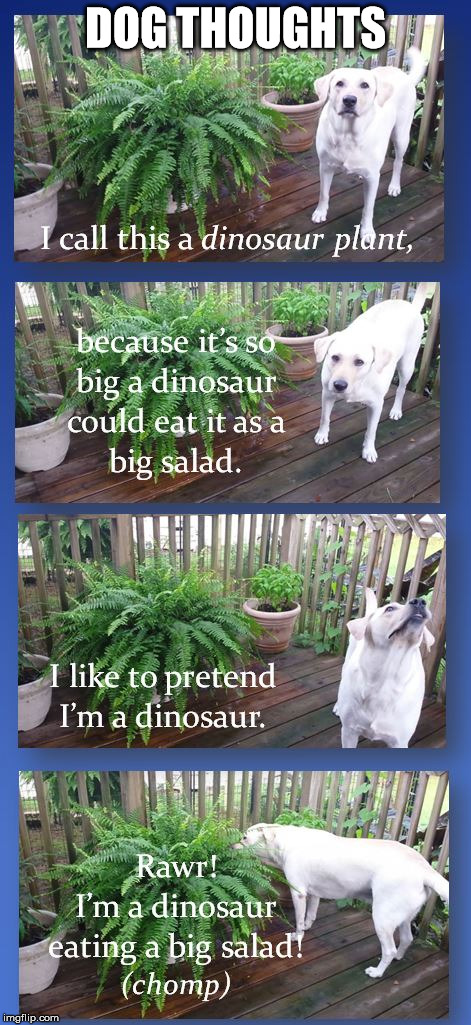 Dinosaur Plant |  DOG THOUGHTS | image tagged in funny,labs,dogs | made w/ Imgflip meme maker