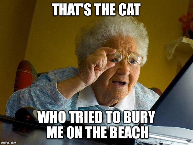 Grandma Finds The Internet Meme | THAT'S THE CAT WHO TRIED TO BURY ME ON THE BEACH | image tagged in memes,grandma finds the internet | made w/ Imgflip meme maker
