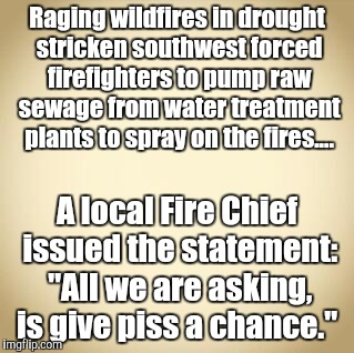 Piss on it.... | Raging wildfires in drought stricken southwest forced firefighters to pump raw sewage from water treatment plants to spray on the fires....  | image tagged in blank | made w/ Imgflip meme maker
