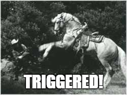Back in my day... | TRIGGERED! | image tagged in trigger,horse,triggered | made w/ Imgflip meme maker