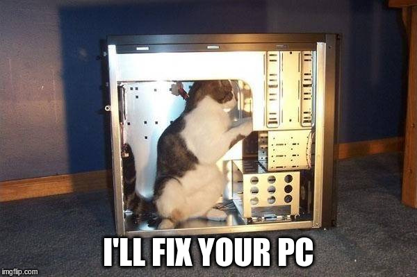 cat in a PC | I'LL FIX YOUR PC | image tagged in cat | made w/ Imgflip meme maker