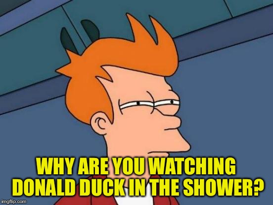 Futurama Fry Meme | WHY ARE YOU WATCHING DONALD DUCK IN THE SHOWER? | image tagged in memes,futurama fry | made w/ Imgflip meme maker