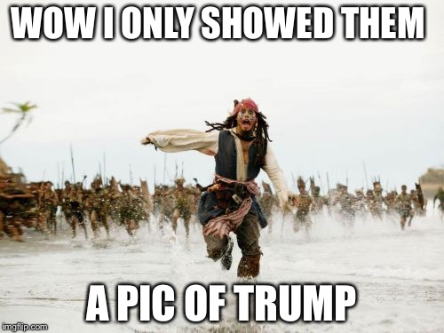 Jack Sparrow Being Chased Meme | WOW I ONLY SHOWED THEM A PIC OF TRUMP | image tagged in memes,jack sparrow being chased | made w/ Imgflip meme maker