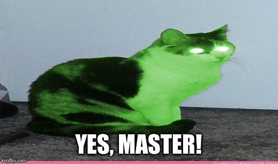 YES, MASTER! | made w/ Imgflip meme maker