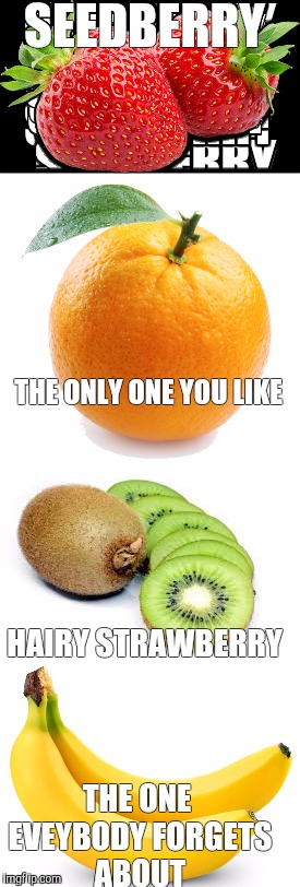 Real fruit names | SEEDBERRY THE ONE EVEYBODY FORGETS ABOUT HAIRY STRAWBERRY THE ONLY ONE YOU LIKE | image tagged in memes,funny memes | made w/ Imgflip meme maker