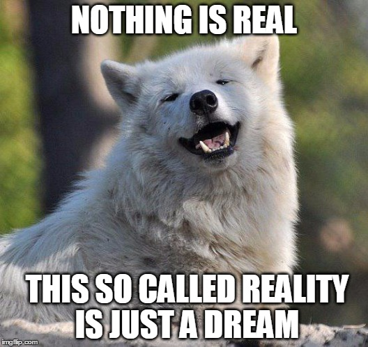 supersecretwolf | NOTHING IS REAL THIS SO CALLED REALITY IS JUST A DREAM | image tagged in supersecretwolf | made w/ Imgflip meme maker