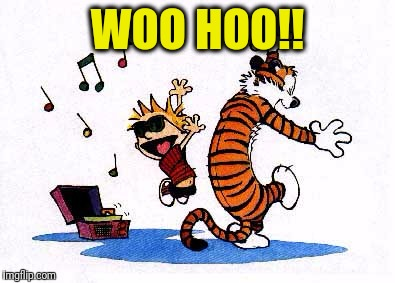 wow! | WOO HOO!! | image tagged in wow | made w/ Imgflip meme maker