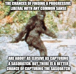 sasquatch | THE CHANCES OF FINDING A PROGRESSIVE LIBERAL WITH ANY COMMON SANSE ARE ABOUT AS ELUSIVE AS CAPTURING A SASQUATCH. BUT THERE IS A BETTER CHAN | image tagged in sasquatch | made w/ Imgflip meme maker