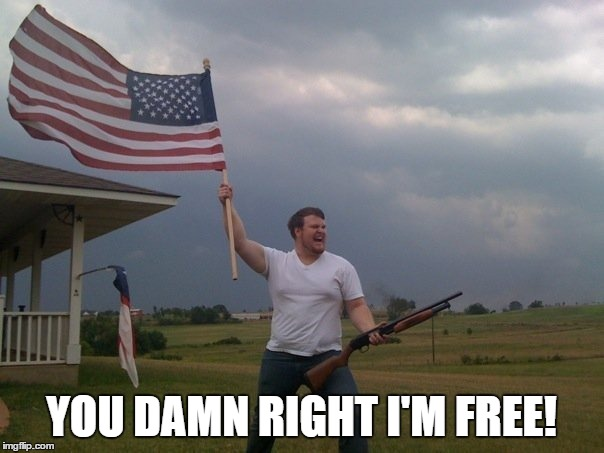 YOU DAMN RIGHT I'M FREE! | made w/ Imgflip meme maker