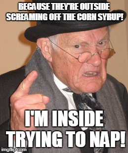 Back In My Day Meme | BECAUSE THEY'RE OUTSIDE SCREAMING OFF THE CORN SYRUP! I'M INSIDE TRYING TO NAP! | image tagged in memes,back in my day | made w/ Imgflip meme maker
