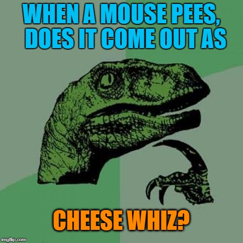 Philosoraptor Meme | WHEN A MOUSE PEES,  DOES IT COME OUT AS CHEESE WHIZ? | image tagged in memes,philosoraptor | made w/ Imgflip meme maker