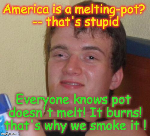 10 Guy Meme | America is a melting-pot? -- that's stupid Everyone knows pot doesn't melt! It burns! that's why we smoke it ! | image tagged in memes,10 guy | made w/ Imgflip meme maker