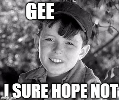 beave | GEE I SURE HOPE NOT | image tagged in beave | made w/ Imgflip meme maker