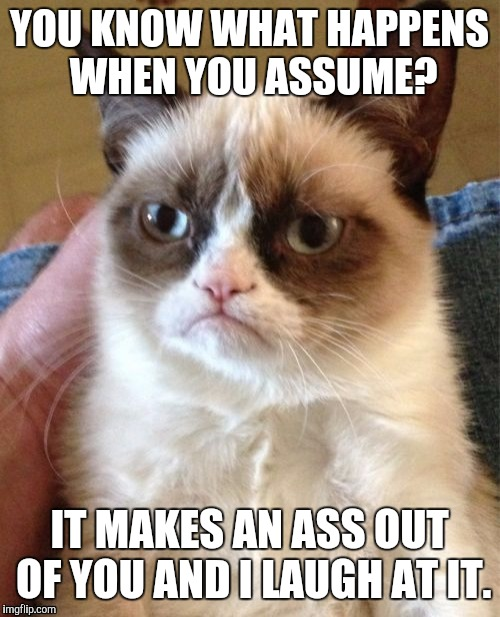 Grumpy Cat Meme | YOU KNOW WHAT HAPPENS WHEN YOU ASSUME? IT MAKES AN ASS OUT OF YOU AND I LAUGH AT IT. | image tagged in memes,grumpy cat | made w/ Imgflip meme maker