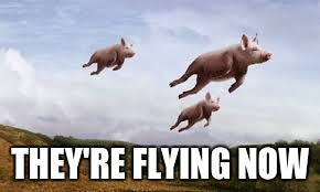 THEY'RE FLYING NOW | made w/ Imgflip meme maker