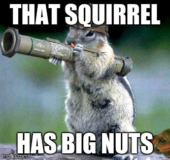 THAT SQUIRREL HAS BIG NUTS | made w/ Imgflip meme maker